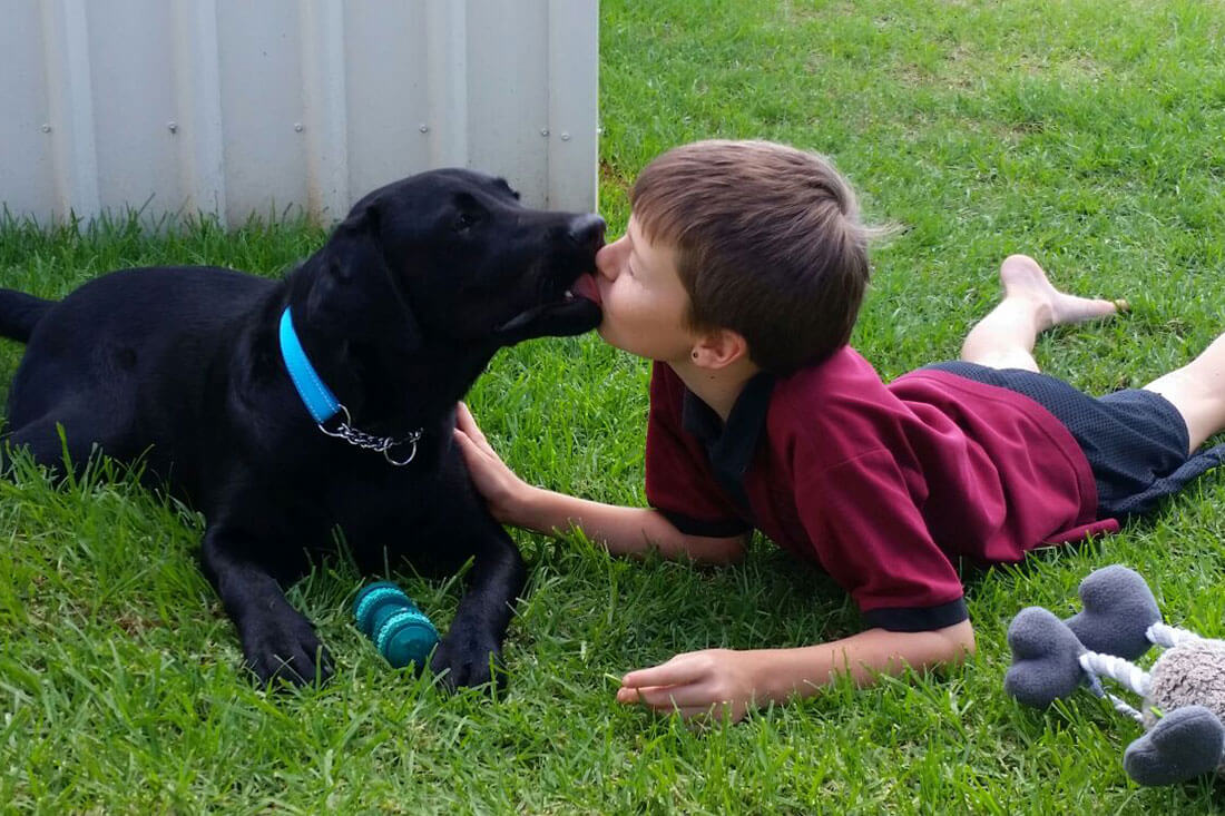 Smart Pups Assistance Dogs | Making a difference to the lives of