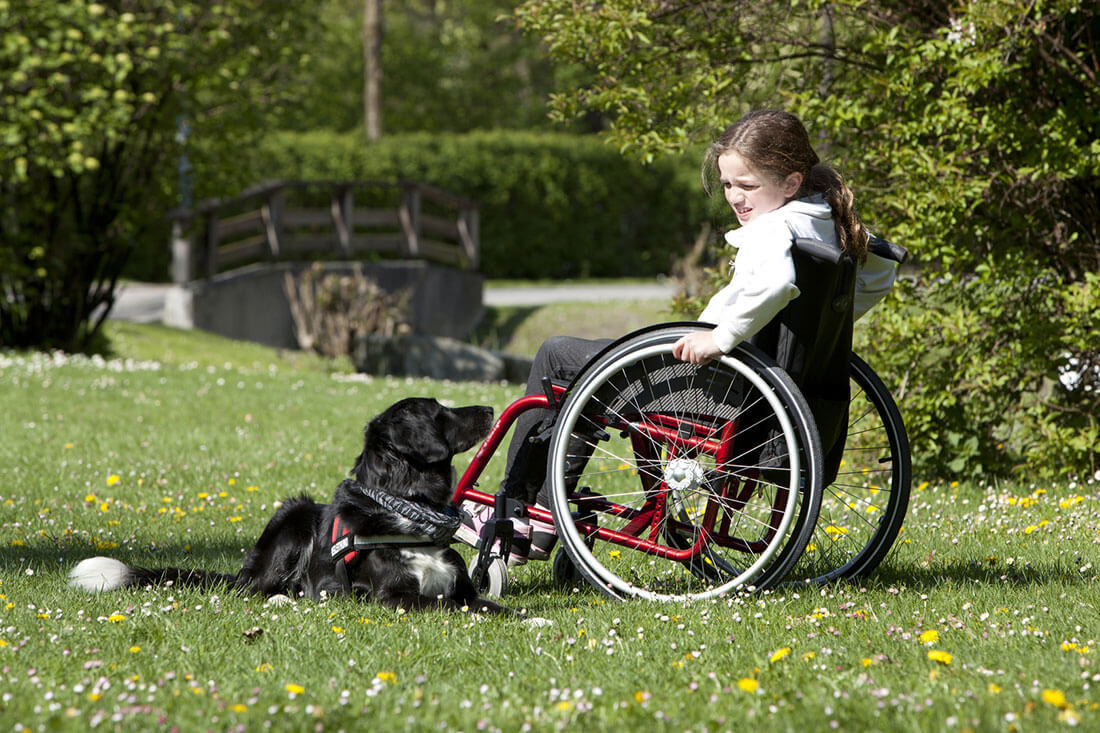 Girl in wheelchair with assistance dog