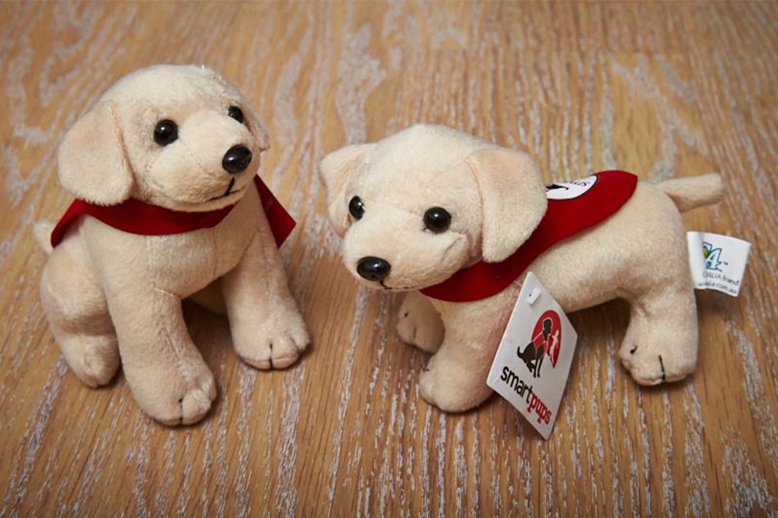 19. Sell Smart Pups Merchandise
